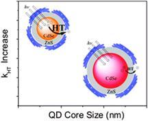 core-size