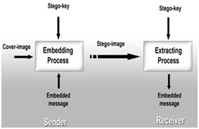 A novel embedding algorithm for mr image and video steganography process of steganography ccuart Image collections